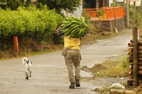 Agencia Colombiana para la Reintegración