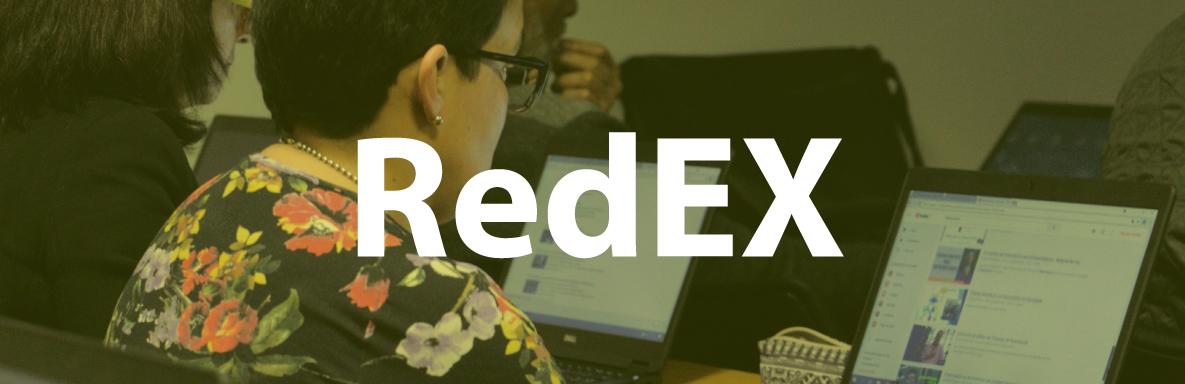 banner_redex